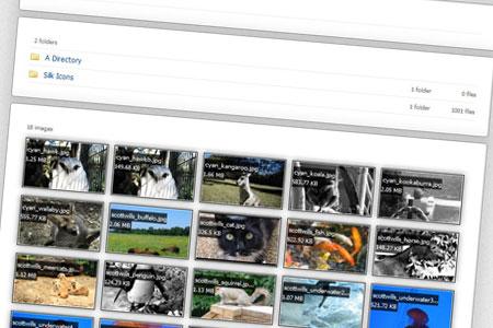 اسکریپت فایل دایرکتوری Aberrant File Browser