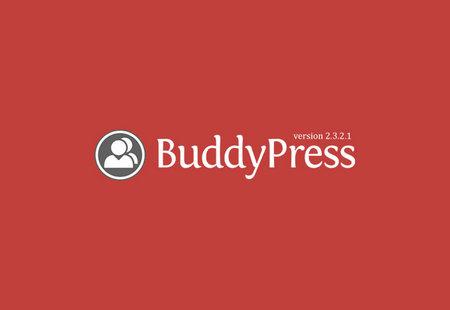 بادی پرس پارسی نسخه 2.3.2.1 منتشر شد