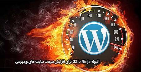 افزایش سرعت وردپرس با افزونه GZip Ninja