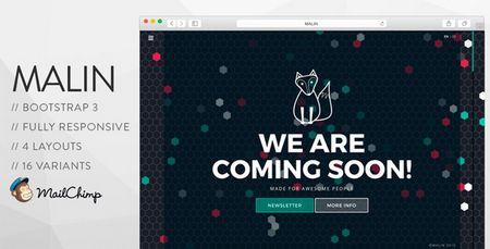 دانلود قالب HTML و بی نظیر به زودی MALIN