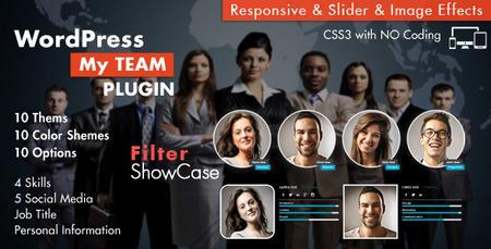 افزونه نمایش تیم کاری در وردپرس My Team Showcase