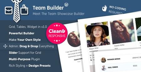 افزونه معرفی و آشنایی تیم کاری با Team Builder برای وردپرس