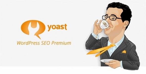 افزونه وردپرس سئو فارسی با WordPress SEO Premium Yoast