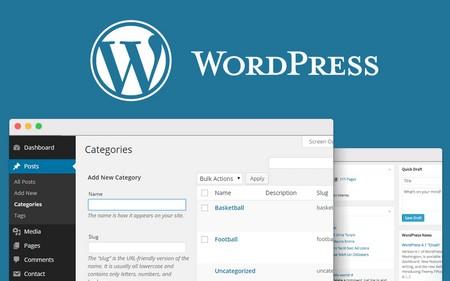 دسته بندی برگه های وردپرس با افزونه Add Category to Pages