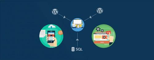 درون ریزی و برون ریزی وردپرس با CSV Import for WordPress