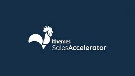 افزونه مدیریت فروش فروشگاه ووکامرس Sales Accelerator Pro