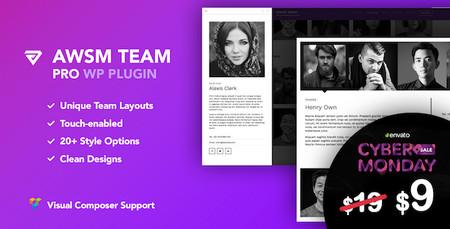 افزونه ایجاد صفحه معرفی اعضای تیم در وردپرس The Team Pro
