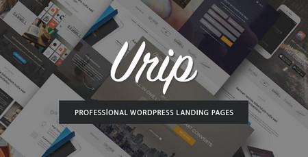پوسته تک صفحه ای و شرکتی Urip برای وردپرس