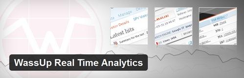 افزونه نمایش آمار سایت وردپرسی WassUp Real Time Analytics