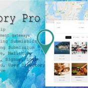 افزونه وردپرس جستجو و معرفی خدمات شهری Directory Pro