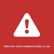 رفع خطای Fatal error: Call to undefined function is_cart در وردپرس
