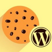 Fix-cookie-problem-in-WordPress-Logo