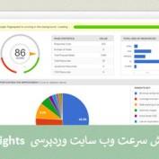 افزایش سرعت وب سایت وردپرسی با افزونه Google Pagespeed Insights
