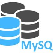 Mysql-wp