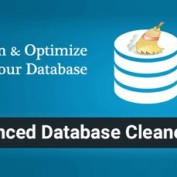 افزونه بهینه سازی دیتابیس وردپرس Advanced Database Cleaner Pro