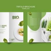 طرح لایه باز بروشور 3 لتی غذای زیستی