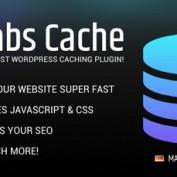 افزونه افزایش سرعت سایت وردپرسی Borlabs Cache