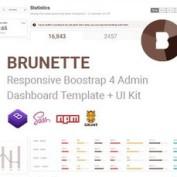 قالب مدیریت وب سایت Brunette به صورت HTML و UI Kit