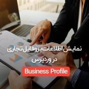 bussiness-profile-20script