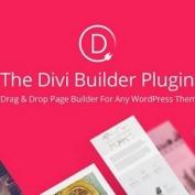 http://www.20script.ir/wp-content/uploads/divi-builder.jpg
