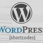 جستجو و حذف شورت کد بی استفاده در وردپرس