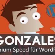افزونه افزایش سرعت وردپرس Gonzales