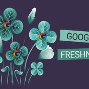 google-freshness