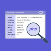 how-to-check-php-version-20script