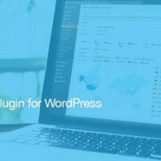 http://www.20script.ir/wp-content/uploads/mailster-email-newsletter-plugin-for-wordpress.jpg