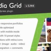 http://www.20script.ir/wp-content/uploads/media-grid-wordpress-responsive-portfolio.jpg
