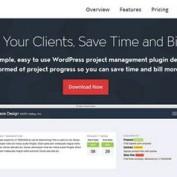 مدیریت پروژه در وردپرس با افزونه Panorama