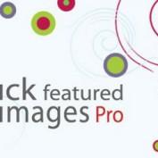 افزونه تغییر و ویرایش تصاویر شاخص در وردپرس Quick Featured Images Pro