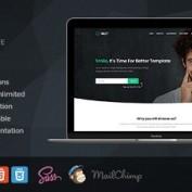 قالب تک صفحهای HTML شرکتی Smiley
