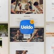 ueldo-responsive-multi-purpose-wordpress-theme