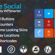 http://www.20script.ir/wp-content/uploads/ultimate-social-easy-social-share-buttons-and-fan-counters-for-wordpress.jpg