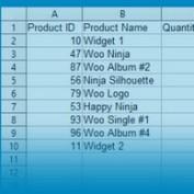 گزارش فروش محصولات در ووکامرس با افزونه Product Sales Report