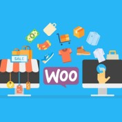 woo-traffic-and-sales