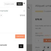 woocommerce-cart-all-in-one