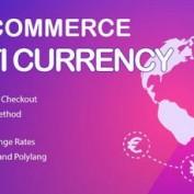 افزونه نمایش قیمت محصولات ووکامرس با چند ارز مختلف WooCommerce Multi Currency