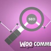 woocommerce-seo