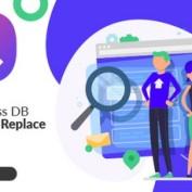 جایگزین کردن متن و لینک در کل سایت وردپرسی با افزونه WordPress DB Search & Replace