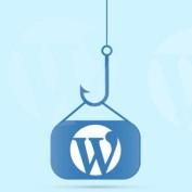 wordpress-hook-20script