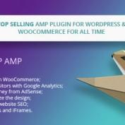 افزونه ایجاد نسخه موبایل سایت وردپرس WP AMP نسخه 9.0.7