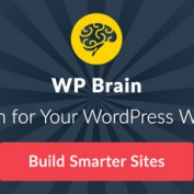 wp-brain-a-brain-for-your-wordpress-website