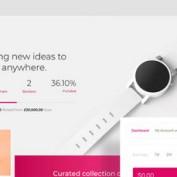 wp-crowdfunding-pro