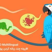 افزونه چند زبانه کردن یواست سئو WPML Yoast SEO Multilingual