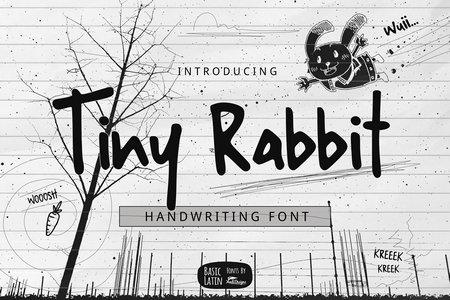 دانلود رایگان فونت Tiny Rabbit   فونت پرمیوم و جذاب طراحی