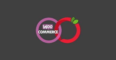 اتصال ووکامرس به سایت ترب با افزونه Woo Torob