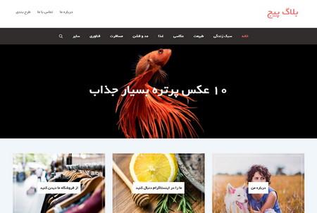 قالب وبلاگی وردپرس Blog Page فارسی