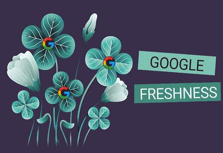 سئو و محتوای جدید | الگوریتم Freshness گوگل را بشناسید!